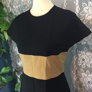 NWT Anne Klein Fit & Flare Contrast Dress